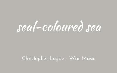 Seal-coloured sea