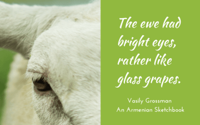 Bright eyes like glass grapes
