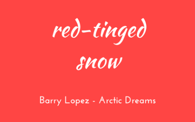 Red-tinged snow