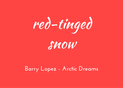 Barry Lopez Arctic Dreams