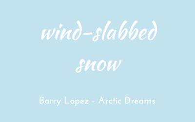 Wind-slabbed snow