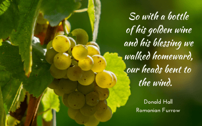 Golden wine and blessing
