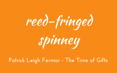 Reed-fringed spinney