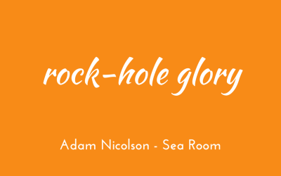 Rock-hole glory