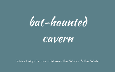 Bat-haunted cave