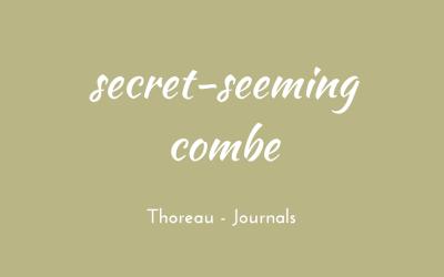 Secret-seeming combe