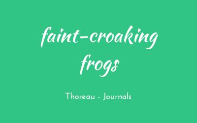 Faint-croaking frogs