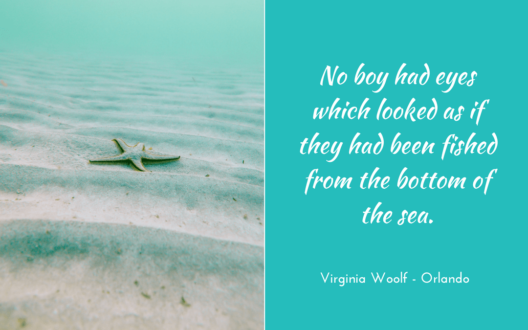 Virginia Woolf - Orlando - Photo credit: Linus Nyland at unsplash.com