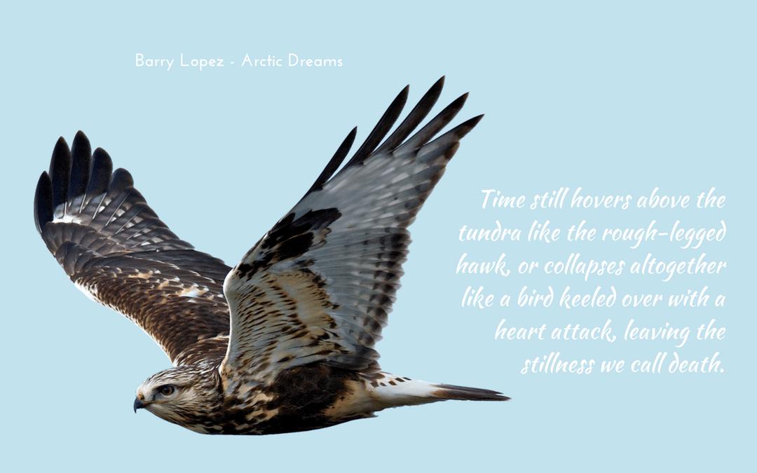 Barry Lopez - Arctic Dreams - quotation