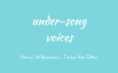 Under-song voices