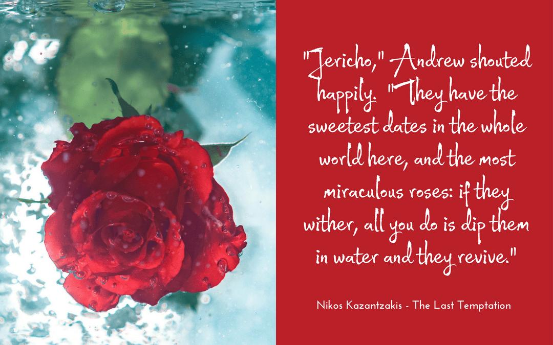 Virginia Woolf - Orlando - Photo credit: cristi21tgv at pixabay.com