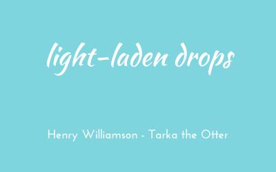 Light-laden drops