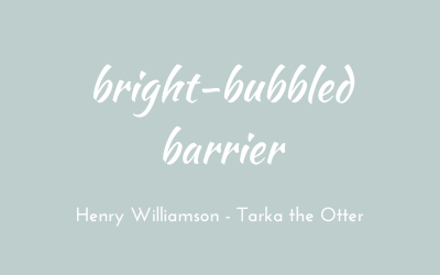 Bright-bubbled barrier