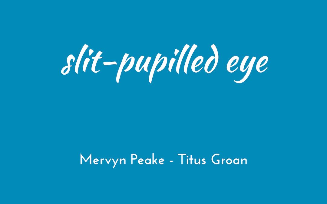 Mervyn Peake - Gormenghast - Titus Groan - triologism