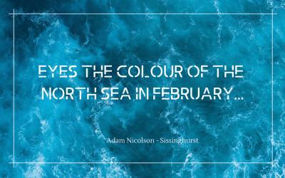 Sea the colour