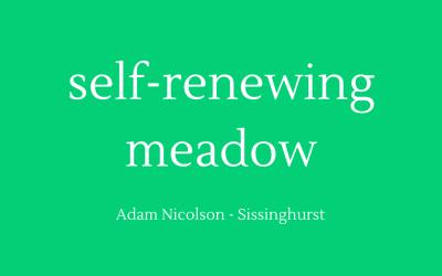 Self-renewing meadow