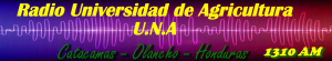 Radio Universidad de Agricultura