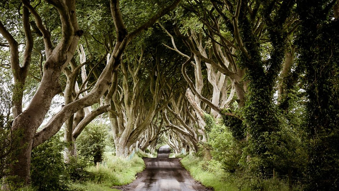 Game of Thrones Film Locations | Game Of Thrones, Things To Do, Tours And  Trails | A blog full of ideas and inspiration | Visit Belfast