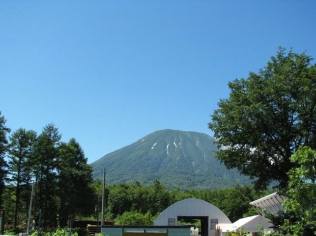 photo by 爽快!!ラフティングツアー 半日コース(北海道・ニセコ)|そとあそび