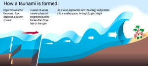 Digital infographics by Steven Stankiewicz at Coroflot