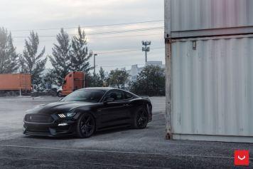 Mustang Eibach lowering springs