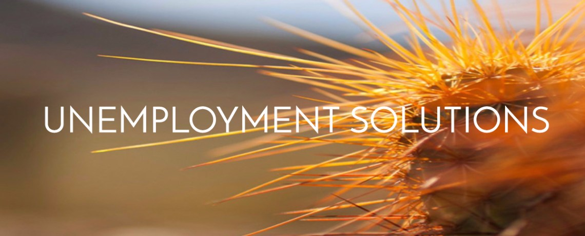 Unemployment Solutions