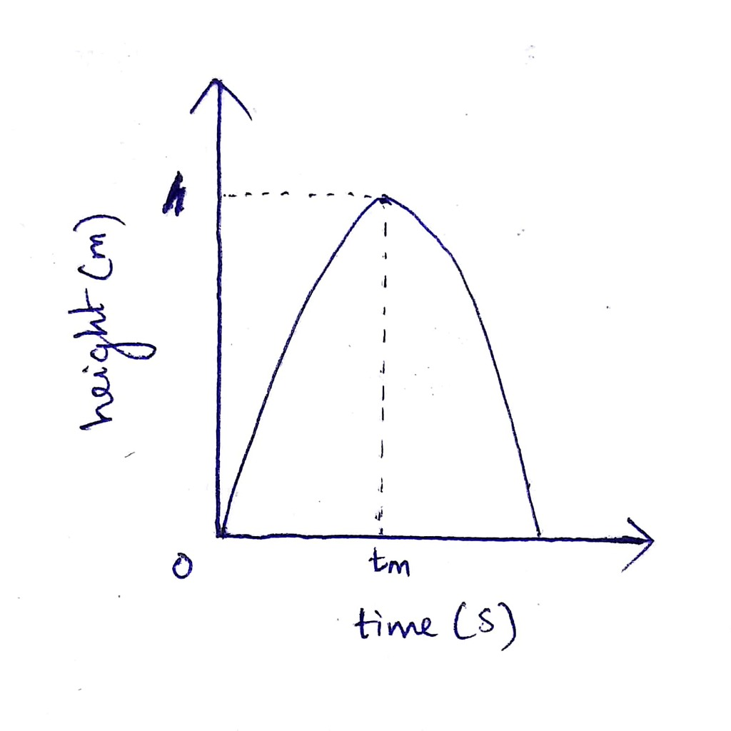 Plz Solve And Explain In Detail Draw The Velocity Time