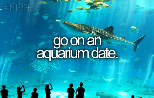 aquarium, before i die, bucket list, crush, date