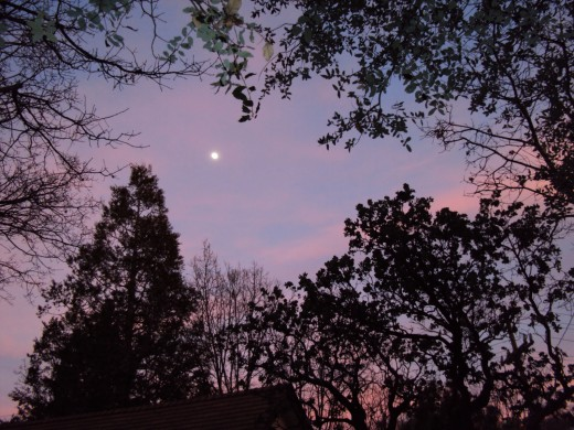 The purple and pink colors in the sky look romantic with the moon.
