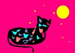 Emile my cat
