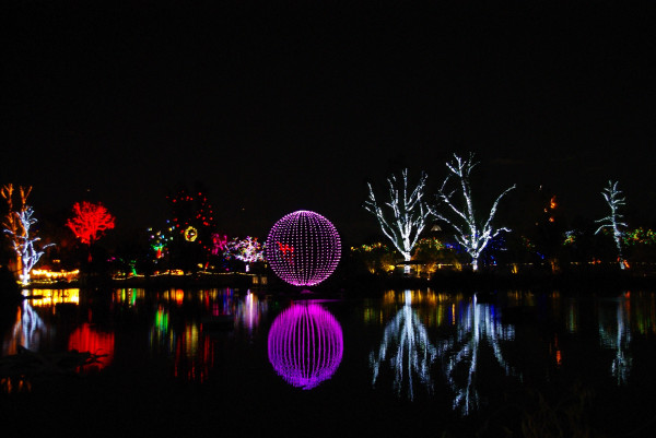 Zoo Lights Phx Az