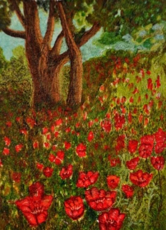 Poppy Meadows