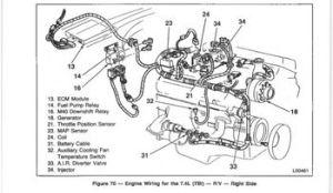 Tbi Transmission Diagram  Wiring Diagram