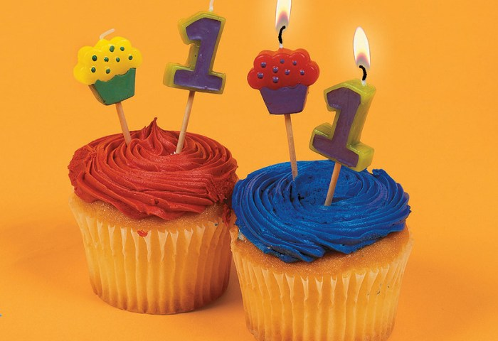 Cupcake 1st Birthday Candles Discontinued