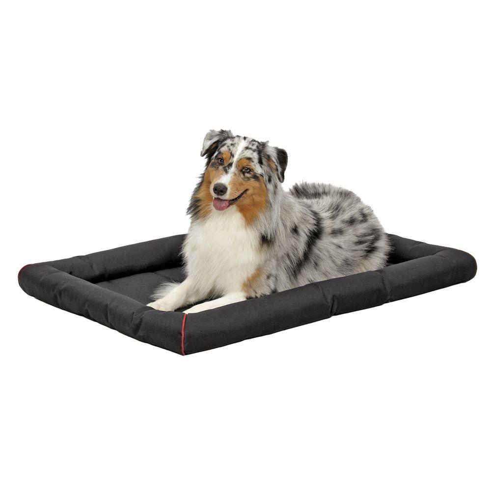 Dog Supplies Dog Amp Puppy Products Petsmart