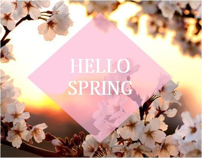 flowers, hello spring, pink