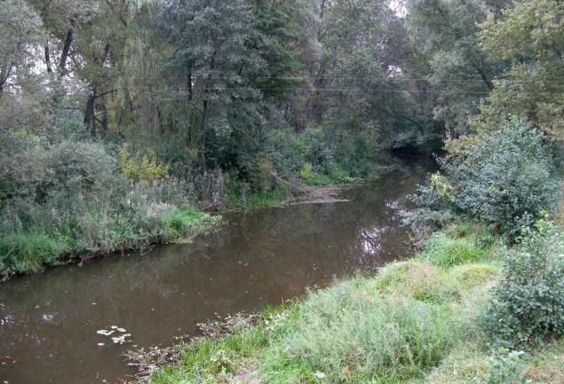 Річка Норин (Норинь)