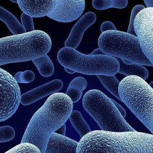 قريباً.. الاستغناء عن فحوص المختبر.. جهاز يكتشف البكتيريا