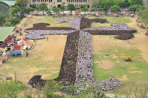 Image result for ust cross