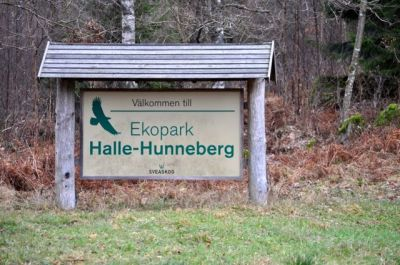 Naturreservat Halle-Hunneberg