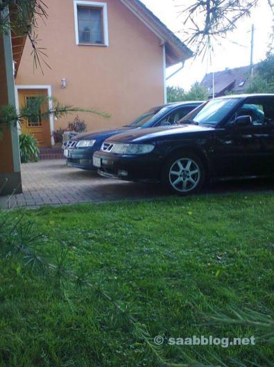 Saab siblings among themselves