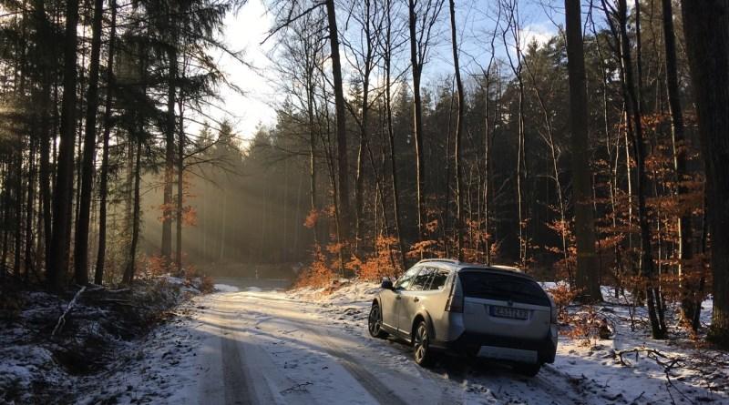 Saab 9-3x en el bosque