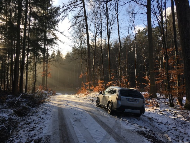Saab 9-3x in the forest