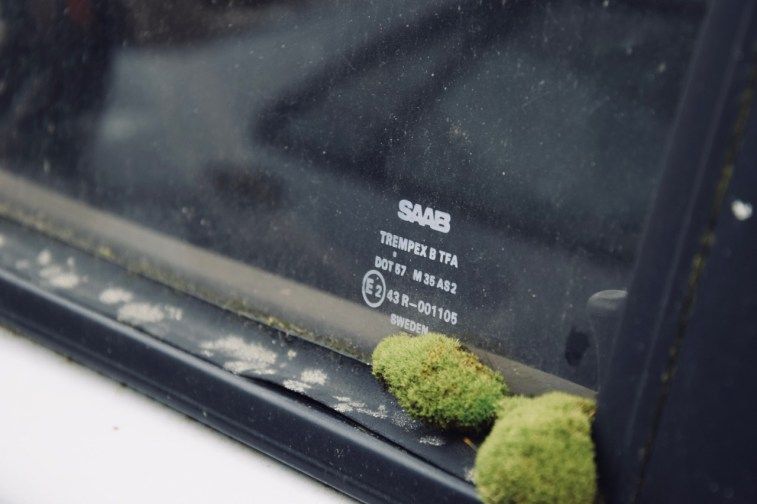 A natureza toma posse deste Saab