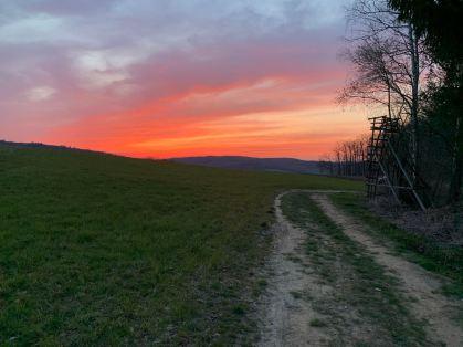 Naturen trycker fram fantastiska solnedgångar. Du måste bara titta.