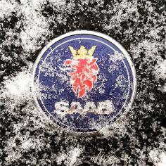 Det snöade. Easy. Foto av Johannes.