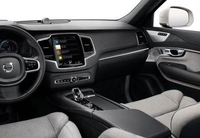 Laine dans la Volvo. Housses de siège alternatives de Suède.