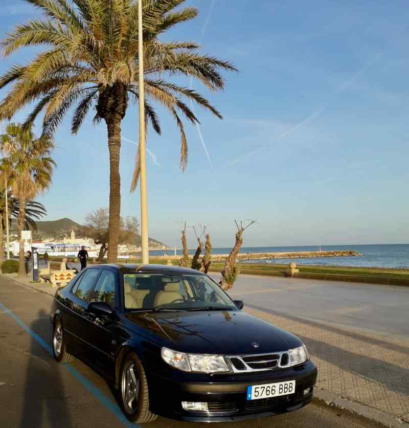 Saab 9-5 unter Palmen