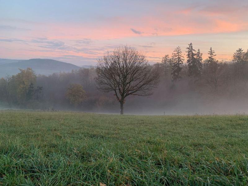 Abend - der Nebel kriecht aus dem Tal