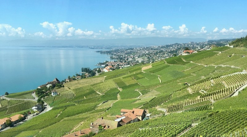 En resa genom Schweiz. Vid Genèvesjön.